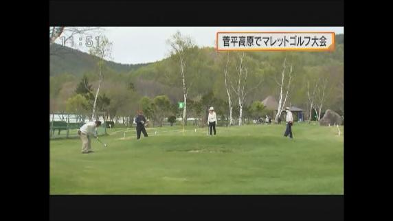菅平高原でマレットゴルフ